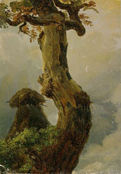 All Underneath the Eildon Tree by Joshua Gage